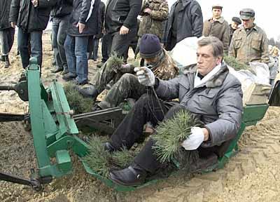 Австралія відмовилася від допомоги України в ліквідації наслідків масштабних пожеж - Цензор.НЕТ 3502