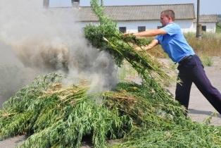 На Херсонщине милиция продолжает операцию  «МАК-2013»
