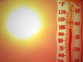 Сотрудники облгосадминистрации получили солнечный удар?