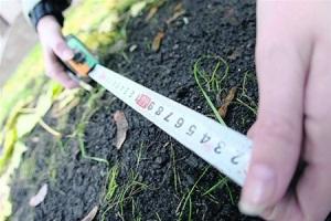 На Херсонщине 245 участников АТО обратились за получением земельных участков