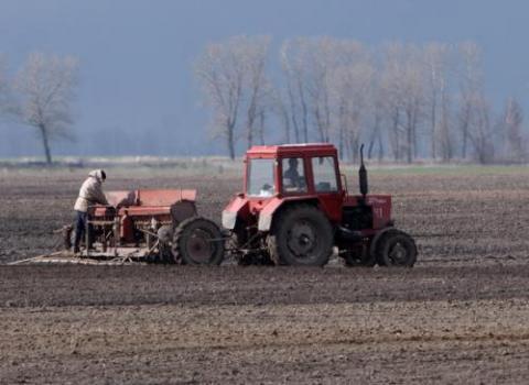 Херсонские аграрии уже засеяли 14% посевных площадей
