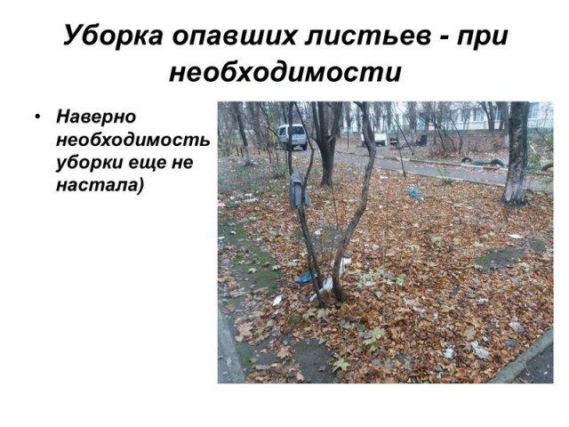 """Жители Херсона сделали презентацию о том, как КП """"Днепровский"""" уничтожает их дом"""