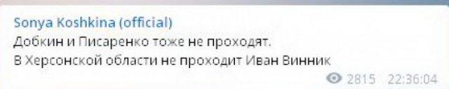 Винник – все, в Раду он не проходит, - Соня Кошкина