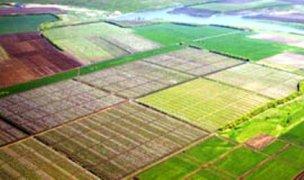 На Херсонщине государству вернули почти 400 га земли