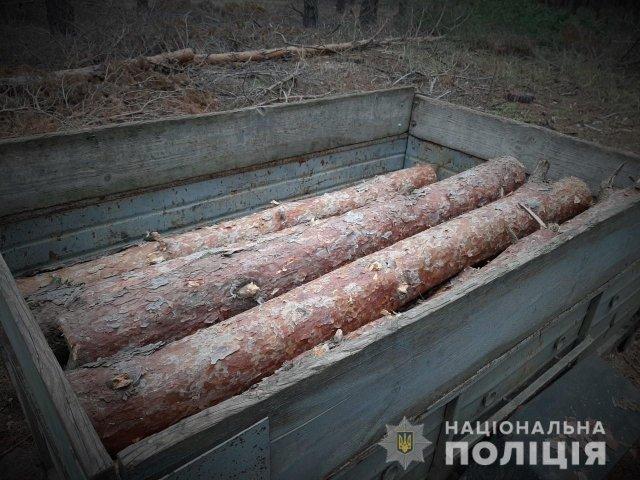 В Голопристанском лесу участковый и лесник поймали незаконного порубщика