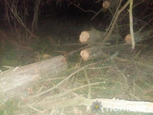 В Олешковской районе задержаны лесные браконьеры
